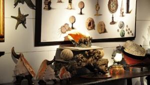 Gigi Bon's studio